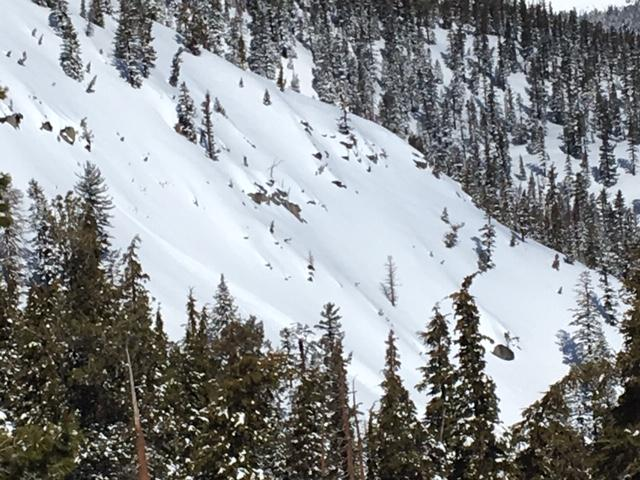 """Small loose wet <a href=""""https://www.sierraavalanchecenter.org/avalanche-terms/avalanche"""" title=""""A mass of snow sliding, tumbling, or flowing down an inclined surface."""" class=""""lexicon-term"""">avalanche</a> off of rocks on east <a href=""""https://www.sierraavalanchecenter.org/avalanche-terms/aspect"""" title=""""The compass direction a slope faces (i.e. North, South, East, or West.)"""" class=""""lexicon-term"""">aspect</a> around 11am."""