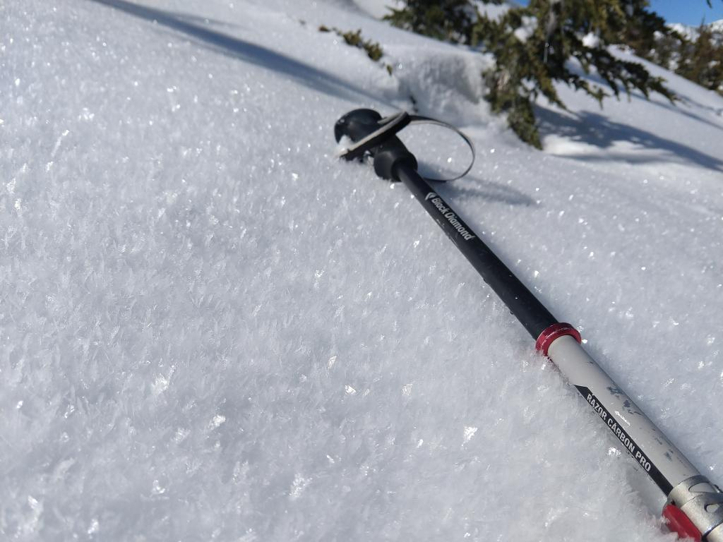 """<a href=""""https://www.sierraavalanchecenter.org/avalanche-terms/surface-hoar"""" title=""""Featherly crystals that form on the snow surface during clear and calm conditions - essentially frozen dew. Forms a persistent weak layer once buried."""" class=""""lexicon-term"""">Surface hoar</a> 10mm+ persisting on N <a href=""""https://www.sierraavalanchecenter.org/avalanche-terms/aspect"""" title=""""The compass direction a slope faces (i.e. North, South, East, or West.)"""" class=""""lexicon-term"""">aspects</a>."""