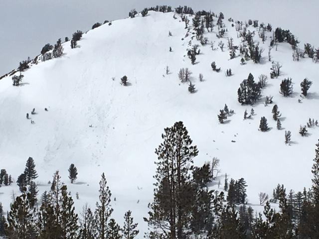 "Loose wet <a href=""https://www.sierraavalanchecenter.org/avalanche-terms/avalanche"" title=""A mass of snow sliding, tumbling, or flowing down an inclined surface."" class=""lexicon-term"">avalanche</a> activity on Fireplug."