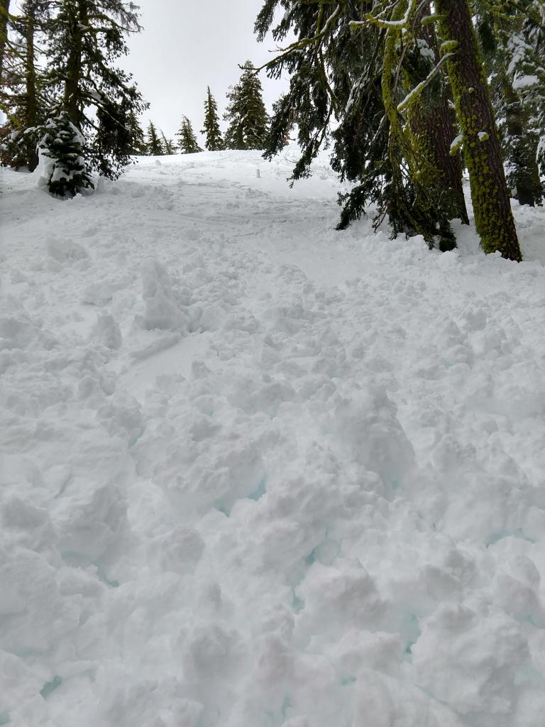 """Debris from the <a href=""""https://www.sierraavalanchecenter.org/avalanche-terms/ski-cut"""" title=""""A stability test where a skier, rider or snowmobiler rapidly crosses an avalanche starting zone to see if an avalanche initiates. Slope cuts can be dangerous and should only be performed by experienced people on small avalanche paths or test slopes."""" class=""""lexicon-term"""">ski cut</a> <a href=""""https://www.sierraavalanchecenter.org/avalanche-terms/trigger"""" title=""""A disturbance that initiates fracture within the weak layer causing an avalanche. In 90 percent of avalanche accidents, the victim or someone in the victims party triggers the avalanche."""" class=""""lexicon-term"""">triggered</a> loose wet <a href=""""https://www.sierraavalanchecenter.org/avalanche-terms/avalanche"""" title=""""A mass of snow sliding, tumbling, or flowing down an inclined surface."""" class=""""lexicon-term"""">avalanche</a> in the previous photo"""