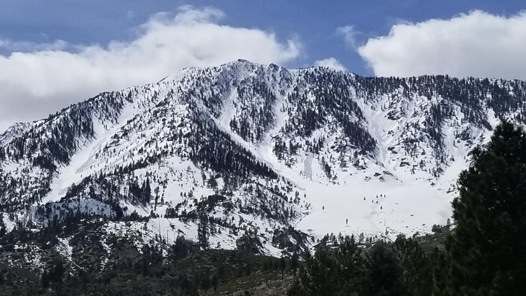 """Trimmer Peak East Slope <a href=""""/avalanche-terms/avalanche"""" title=""""A mass of snow sliding, tumbling, or flowing down an inclined surface."""" class=""""lexicon-term"""">Avalanches</a>"""