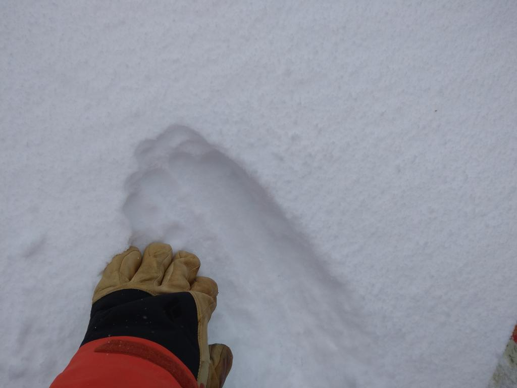 Signs of accumulating snowfall on crust at 7,800'.
