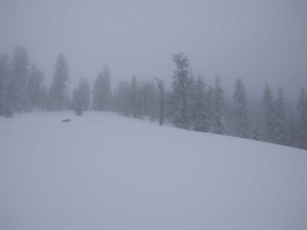 Foggy conditions above about 7,800'.