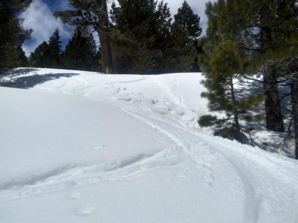 Weak wet snow that failed with a ski turn on lower angle terrain.