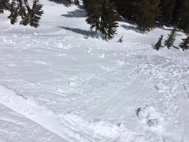 """Roller ball activity along with some small loose wet <a href=""""/avalanche-terms/avalanche"""" title=""""A mass of snow sliding, tumbling, or flowing down an inclined surface."""" class=""""lexicon-term"""">avalanches</a>."""