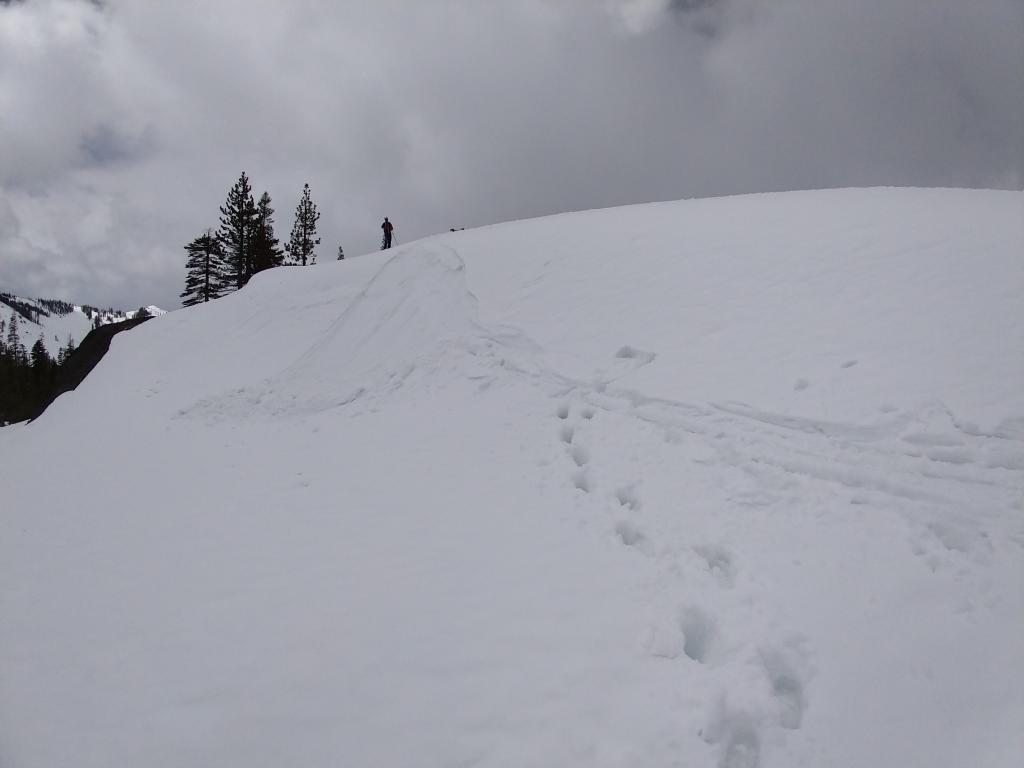 """<a href=""""/avalanche-terms/ski-cut"""" title=""""A stability test where a skier, rider or snowmobiler rapidly crosses an avalanche starting zone to see if an avalanche initiates. Slope cuts can be dangerous and should only be performed by experienced people on small avalanche paths or test slopes."""" class=""""lexicon-term"""">Ski cut</a> <a href=""""/avalanche-terms/trigger"""" title=""""A disturbance that initiates fracture within the weak layer causing an avalanche. In 90 percent of avalanche accidents, the victim or someone in the victims party triggers the avalanche."""" class=""""lexicon-term"""">triggered</a> loose wet <a href=""""/avalanche-terms/loose-snow-avalanche"""" title=""""An avalanche that releases from a point and spreads downhill collecting more snow - different from a slab avalanche. Also called a point-release or sluff."""" class=""""lexicon-term"""">sluff</a> on a nearby E <a href=""""/avalanche-terms/aspect"""" title=""""The compass direction a slope faces (i.e. North, South, East, or West.)"""" class=""""lexicon-term"""">aspect</a> at noon."""