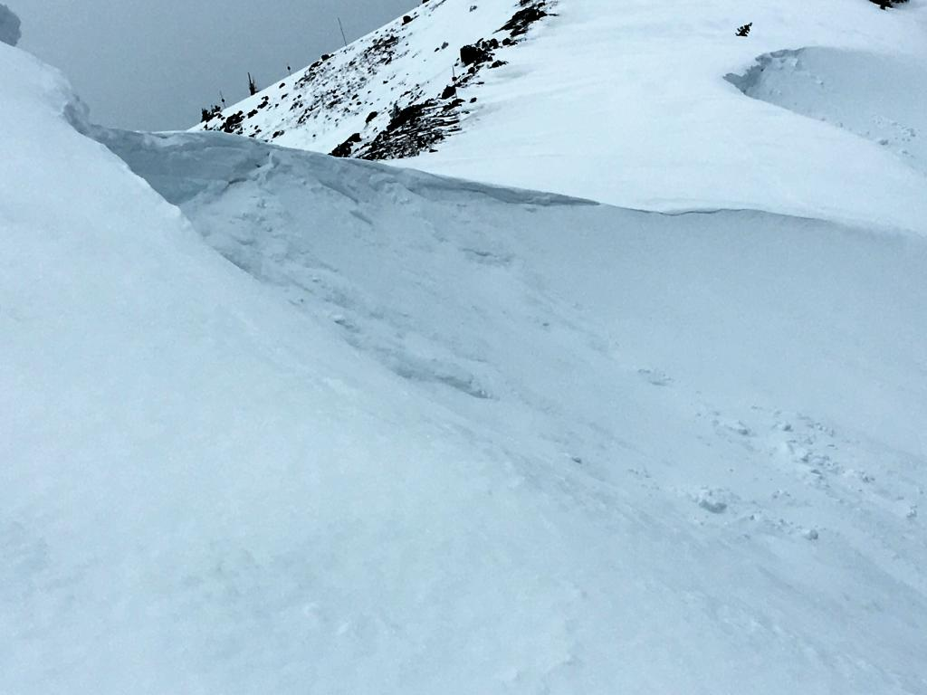 """Another <a href=""""https://www.sierraavalanchecenter.org/avalanche-terms/cornice"""" title=""""A mass of snow deposited by the wind, often overhanging, and usually near a sharp terrain break such as a ridge. Cornices can break off unexpectedly and should be approached with caution."""" class=""""lexicon-term"""">cornice</a> failure near the true summit of Judah."""