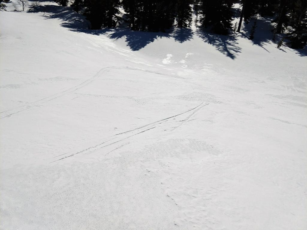 Patches of new snow less than .5 inches deep existed on top of the firm refrozen crust. In most places the crust was exposed on the surface.