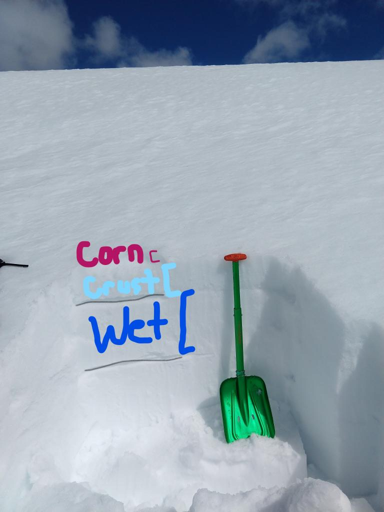 """1 to 2 inches of wet <a href=""""/avalanche-terms/corn-snow"""" title=""""Large-grained, rounded crystals formed from repeated melting and freezing of the snow."""" class=""""lexicon-term"""">corn snow</a> on top of a 6 inch thick melt/freeze crust on an E <a href=""""/avalanche-terms/aspect"""" title=""""The compass direction a slope faces (i.e. North, South, East, or West.)"""" class=""""lexicon-term"""">aspect</a> at 10 am. About 16 inches of wet snow existed below the crust."""
