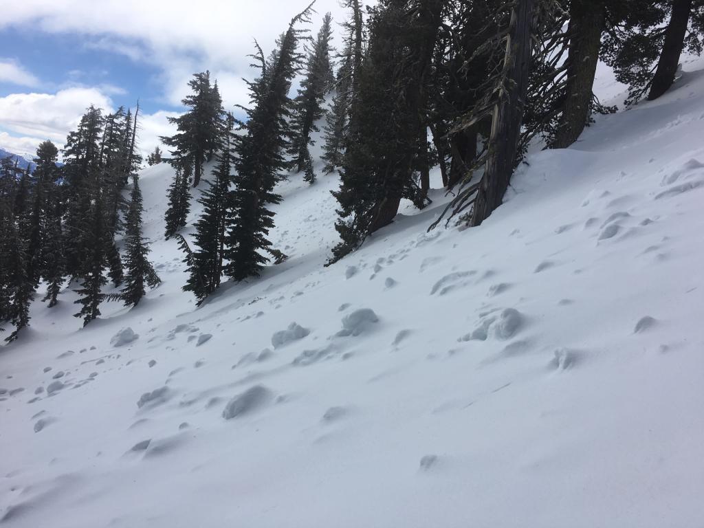 Large debris under a light coat of snow