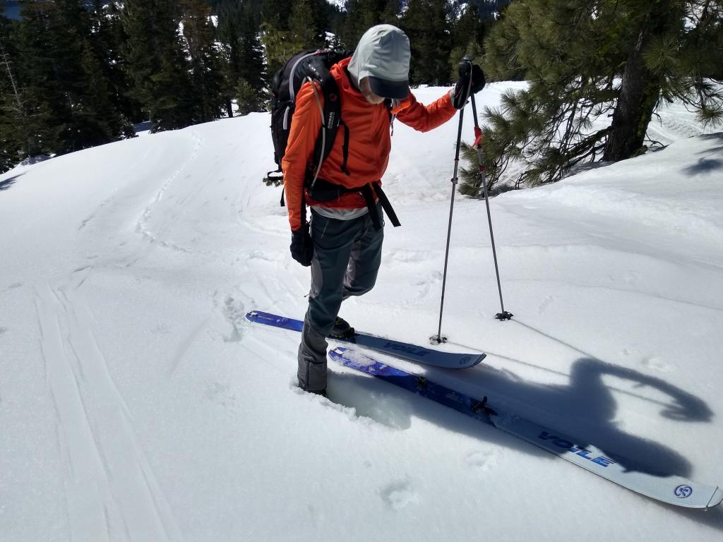 Still ski supportable but not boot supportable 9 inch thick 1F hard crust at 7,420' at 10:15 am.