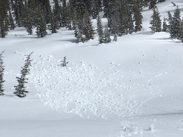 Small roller ball activity from ski turns involving the recent 3-4'' of new snow.