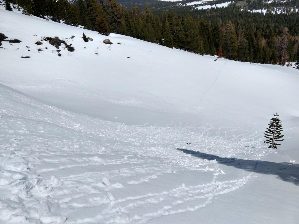 """Skier <a href=""""/avalanche-terms/trigger"""" title=""""A disturbance that initiates fracture within the weak layer causing an avalanche. In 90 percent of avalanche accidents, the victim or someone in the victims party triggers the avalanche."""" class=""""lexicon-term"""">triggered</a> rollerballs and pinwheels"""