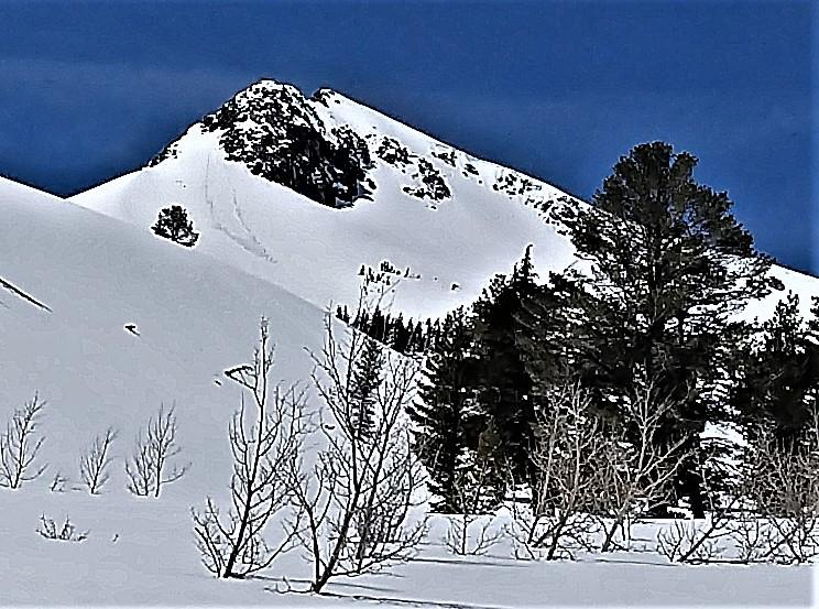 "<a href=""https://www.sierraavalanchecenter.org/avalanche-terms/d1"" title=""Relatively harmless to people."" class=""lexicon-term"">D1</a> loose wet on an E facing slope on Stevens"