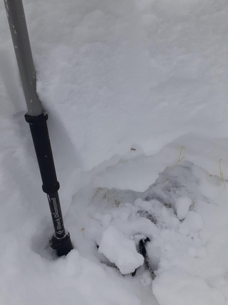 """Hand <a href=""""/avalanche-terms/snowpit"""" title=""""A pit dug vertically into the snowpack where snow layering is observed and stability tests may be performed. Also called a snow profile."""" class=""""lexicon-term"""">pit</a> showing crust and basal <a href=""""/avalanche-terms/faceted-snow"""" title=""""Angular snow with poor bonding created from large temperature gradients within the snowpack."""" class=""""lexicon-term"""">facets</a>"""