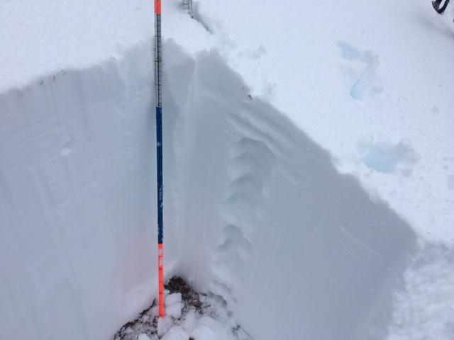 HS=95cm