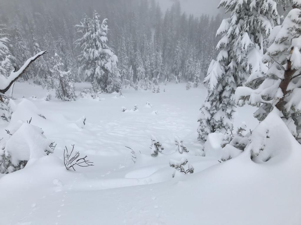 """natural <a href=""""/avalanche-terms/avalanche"""" title=""""A mass of snow sliding, tumbling, or flowing down an inclined surface."""" class=""""lexicon-term"""">avalanche</a>"""