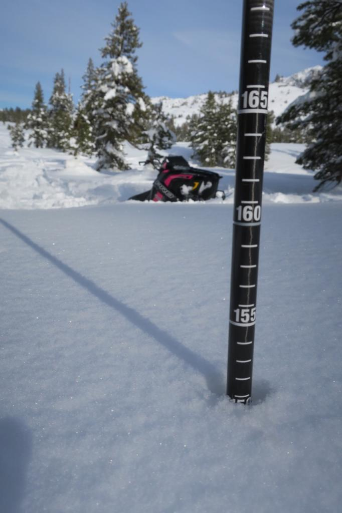 150 cms of snow on a shady slope at the edge of Indian Valley
