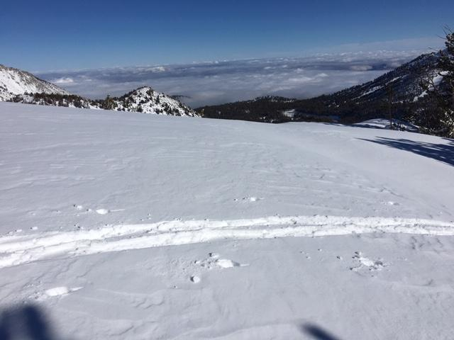 Plenty of soft snow available for transport along ridges if winds increase tomorrow.