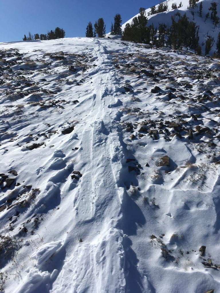 "Reverse <a href=""/avalanche-terms/skin-track"" title=""Backcountry skiers and some snowboarders ascend slopes using climbing skins attached to the bottom of their skis."" class=""lexicon-term"">skin track</a> showing extent of recent wind scouring."