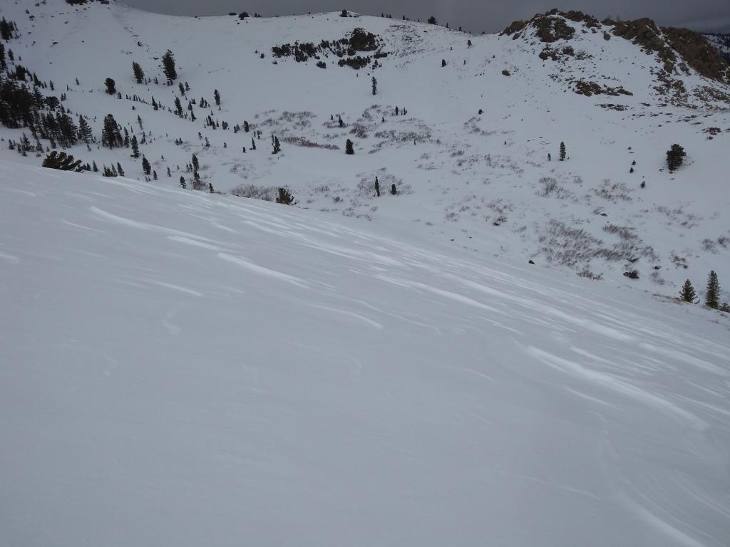 """<a href=""""/avalanche-terms/sastrugi"""" title=""""Wind eroded snow, which often looks rough like frozen waves. Usually found on windward slopes."""" class=""""lexicon-term"""">Sastrugi</a> on low angle <a href=""""/avalanche-terms/leeward"""" title=""""The downwind side of an obstacle such as a ridge."""" class=""""lexicon-term"""">leeward</a> side of ridge."""