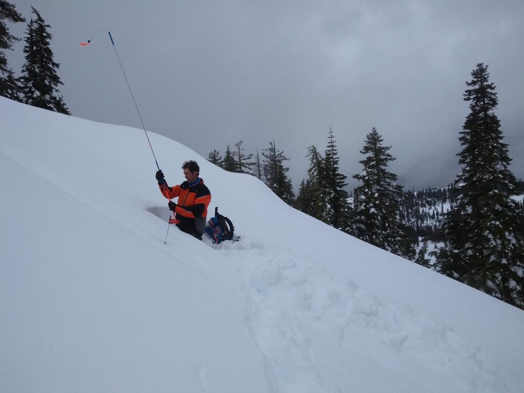 """<a href=""""/avalanche-terms/snowpit"""" title=""""A pit dug vertically into the snowpack where snow layering is observed and stability tests may be performed. Also called a snow profile."""" class=""""lexicon-term"""">Pit</a> location, open below treeline terrain."""