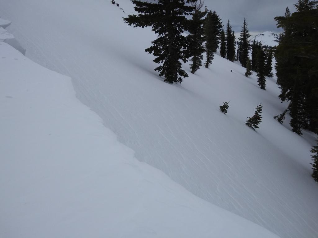 """Hard <a href=""""/avalanche-terms/wind-slab"""" title=""""A cohesive layer of snow formed when wind deposits snow onto leeward terrain. Wind slabs are often smooth and rounded and sometimes sound hollow."""" class=""""lexicon-term"""">wind slab</a> at treeline with obvious snow surface texture that we chose to avoid."""