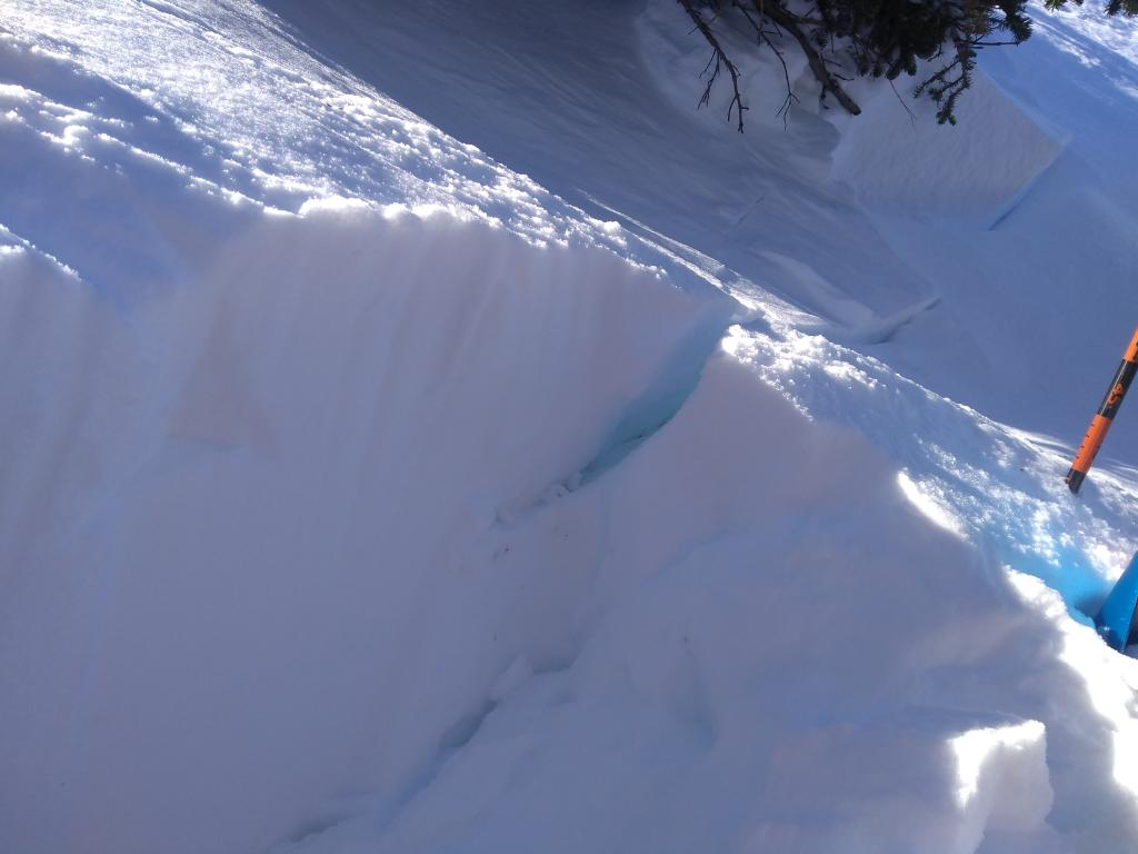 """<a href=""""/avalanche-terms/crown-face"""" title=""""The top fracture surface of a slab avalanche. Usually smooth, clean cut, and angled 90 degrees to the bed surface."""" class=""""lexicon-term"""">Crown</a> line <a href=""""/avalanche-terms/snowpit"""" title=""""A pit dug vertically into the snowpack where snow layering is observed and stability tests may be performed. Also called a snow profile."""" class=""""lexicon-term"""">profile</a> on lower climbers left flank."""