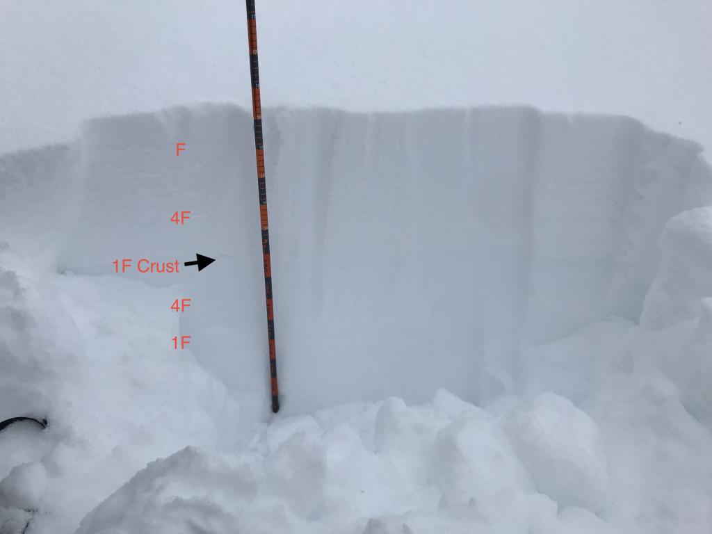 "annotated <a href=""/avalanche-terms/snowpit"" title=""A pit dug vertically into the snowpack where snow layering is observed and stability tests may be performed. Also called a snow profile."" class=""lexicon-term"">pit</a>"