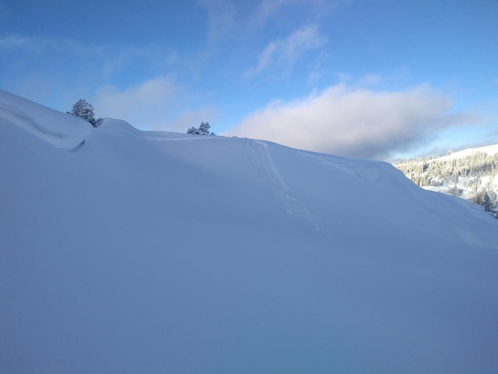 """Typical entrainment of new snow from intentional <a href=""""/avalanche-terms/cornice"""" title=""""A mass of snow deposited by the wind, often overhanging, and usually near a sharp terrain break such as a ridge. Cornices can break off unexpectedly and should be approached with caution."""" class=""""lexicon-term"""">cornice</a> <a href=""""/avalanche-terms/collapse"""" title=""""When the fracture of a lower snow layer causes an upper layer to fall. Also called a whumpf, this is an obvious sign of instability."""" class=""""lexicon-term"""">collapse</a>."""