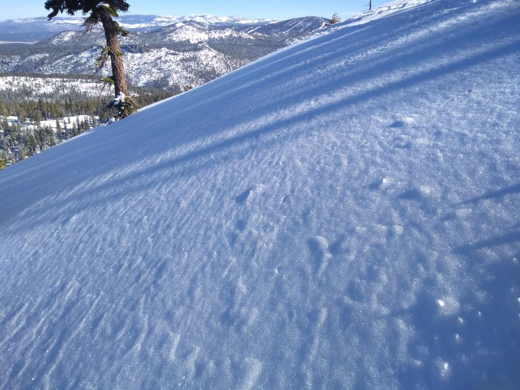 """<a href=""""/avalanche-terms/surface-hoar"""" title=""""Featherly crystals that form on the snow surface during clear and calm conditions - essentially frozen dew. Forms a persistent weak layer once buried."""" class=""""lexicon-term"""">Surface hoar</a> on wind textured surface in ridgetop <a href=""""/avalanche-terms/avalanche"""" title=""""A mass of snow sliding, tumbling, or flowing down an inclined surface."""" class=""""lexicon-term"""">avalanche</a> <a href=""""/avalanche-terms/starting-zone"""" title=""""The portion of an avalanche path where an avalanche releases."""" class=""""lexicon-term"""">start zone</a>."""