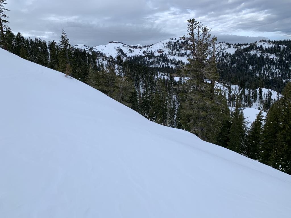 """Evidence of small windslabs on N facing terrain, <a href=""""/avalanche-terms/leeward"""" title=""""The downwind side of an obstacle such as a ridge."""" class=""""lexicon-term"""">leeward</a> to SW winds"""
