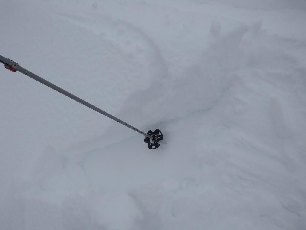 """New <a href=""""/avalanche-terms/wind-slab"""" title=""""A cohesive layer of snow formed when wind deposits snow onto leeward terrain. Wind slabs are often smooth and rounded and sometimes sound hollow."""" class=""""lexicon-term"""">wind slabs</a> failing on Jan 4 crust."""