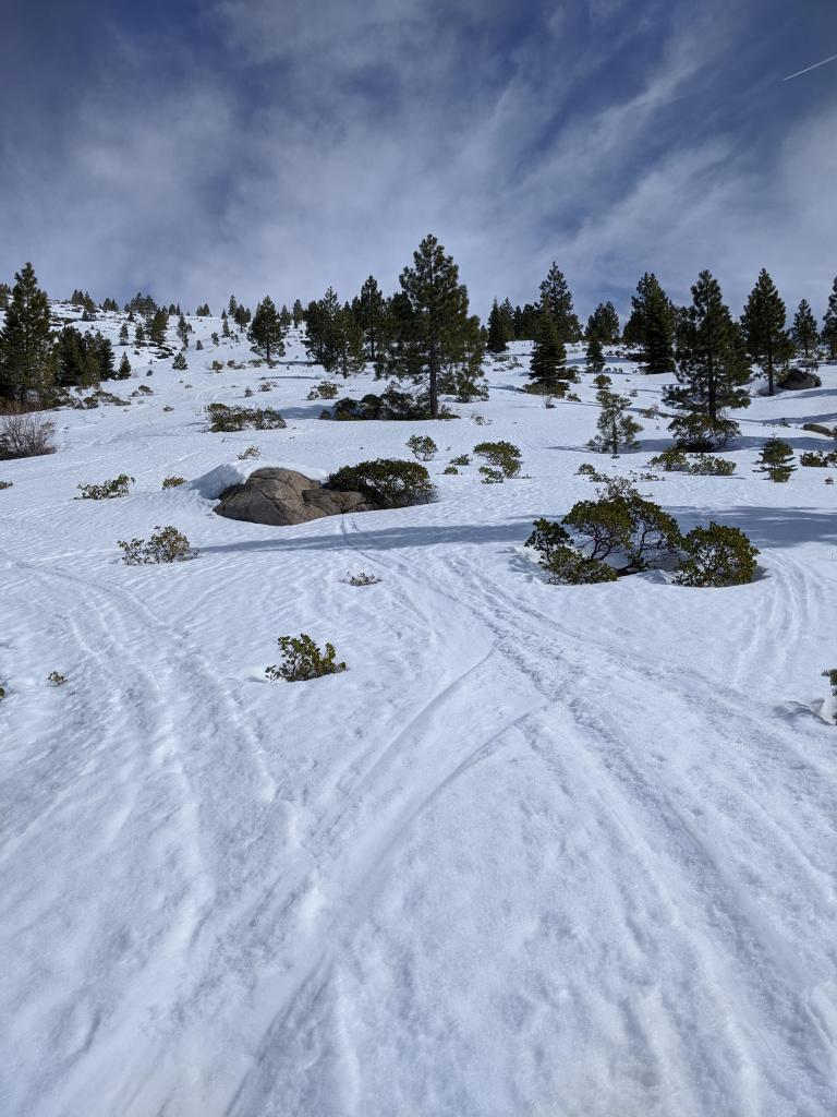 """W and WSW <a href=""""/avalanche-terms/aspect"""" title=""""The compass direction a slope faces (i.e. North, South, East, or West.)"""" class=""""lexicon-term"""">aspects</a> still have decent coverage above 6800 ft."""
