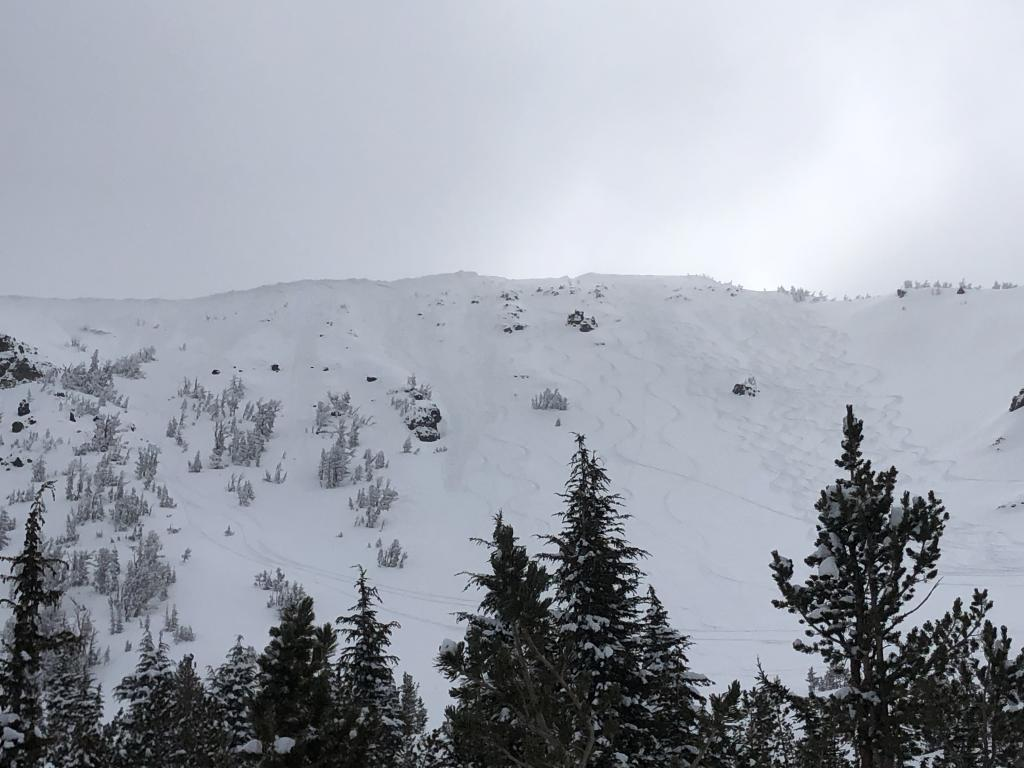 """<a href=""""/avalanche-terms/wind-slab"""" title=""""A cohesive layer of snow formed when wind deposits snow onto leeward terrain. Wind slabs are often smooth and rounded and sometimes sound hollow."""" class=""""lexicon-term"""">Wind Slab</a> <a href=""""/avalanche-terms/avalanche"""" title=""""A mass of snow sliding, tumbling, or flowing down an inclined surface."""" class=""""lexicon-term"""">avalanches</a> - poor photo but 3 obvious crowns just below ridge line.  Debris run out varied from 1/4 slope to 3/4"""