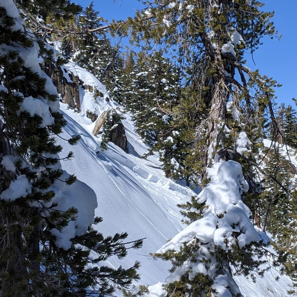 "Climbers left half of <a href=""/avalanche-terms/avalanche"" title=""A mass of snow sliding, tumbling, or flowing down an inclined surface."" class=""lexicon-term"">avalanche</a> that extends out of view."