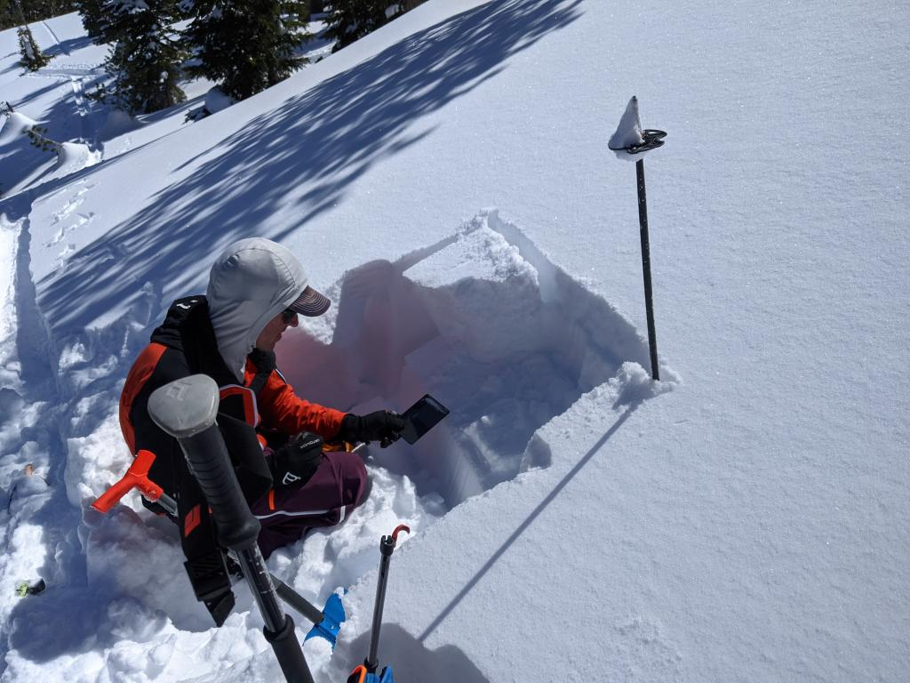 """ECTP 15 on a N facing below treeline slope. The test failed on a <a href=""""/avalanche-terms/snow-layer"""" title=""""A snowpack stratum differentiated from others by weather, metamorphism, or other processes."""" class=""""lexicon-term"""">layer</a> of buried <a href=""""/avalanche-terms/surface-hoar"""" title=""""Featherly crystals that form on the snow surface during clear and calm conditions - essentially frozen dew. Forms a persistent weak layer once buried."""" class=""""lexicon-term"""">surface hoar</a>."""