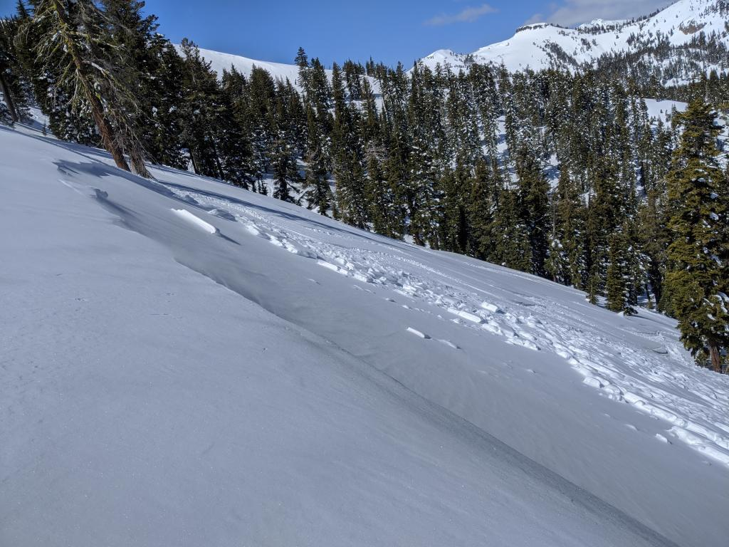 """<a href=""""/avalanche-terms/wind-slab"""" title=""""A cohesive layer of snow formed when wind deposits snow onto leeward terrain. Wind slabs are often smooth and rounded and sometimes sound hollow."""" class=""""lexicon-term"""">Wind slab</a> <a href=""""/avalanche-terms/avalanche"""" title=""""A mass of snow sliding, tumbling, or flowing down an inclined surface."""" class=""""lexicon-term"""">avalanche</a> that failed on a buried <a href=""""/avalanche-terms/surface-hoar"""" title=""""Featherly crystals that form on the snow surface during clear and calm conditions - essentially frozen dew. Forms a persistent weak layer once buried."""" class=""""lexicon-term"""">surface hoar</a> <a href=""""/avalanche-terms/snow-layer"""" title=""""A snowpack stratum differentiated from others by weather, metamorphism, or other processes."""" class=""""lexicon-term"""">layer</a> on Wed. March 25"""
