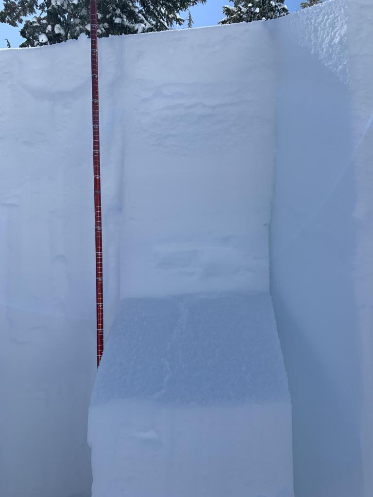 CTM(20) sudden planar at 59cm down