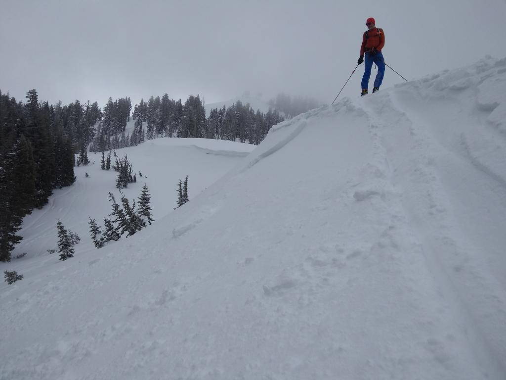 "Small <a href=""/avalanche-terms/wind-slab"" title=""A cohesive layer of snow formed when wind deposits snow onto leeward terrain. Wind slabs are often smooth and rounded and sometimes sound hollow."" class=""lexicon-term"">wind slab</a> <a href=""/avalanche-terms/trigger"" title=""A disturbance that initiates fracture within the weak layer causing an avalanche. In 90 percent of avalanche accidents, the victim or someone in the victims party triggers the avalanche."" class=""lexicon-term"">triggered</a> by <a href=""/avalanche-terms/ski-cut"" title=""A stability test where a skier, rider or snowmobiler rapidly crosses an avalanche starting zone to see if an avalanche initiates. Slope cuts can be dangerous and should only be performed by experienced people on small avalanche paths or test slopes."" class=""lexicon-term"">ski cut</a> on N end of Wildflower Ridge."