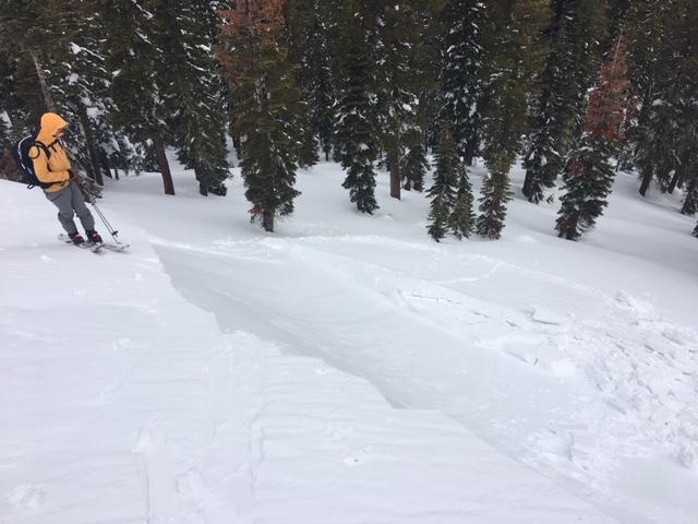"""Reactive dense <a href=""""/avalanche-terms/wind-slab"""" title=""""A cohesive layer of snow formed when wind deposits snow onto leeward terrain. Wind slabs are often smooth and rounded and sometimes sound hollow."""" class=""""lexicon-term"""">wind slab</a> with wide <a href=""""/avalanche-terms/propagation"""" title=""""The spreading of a fracture or crack within the snowpack."""" class=""""lexicon-term"""">propagation</a> on small test slope."""