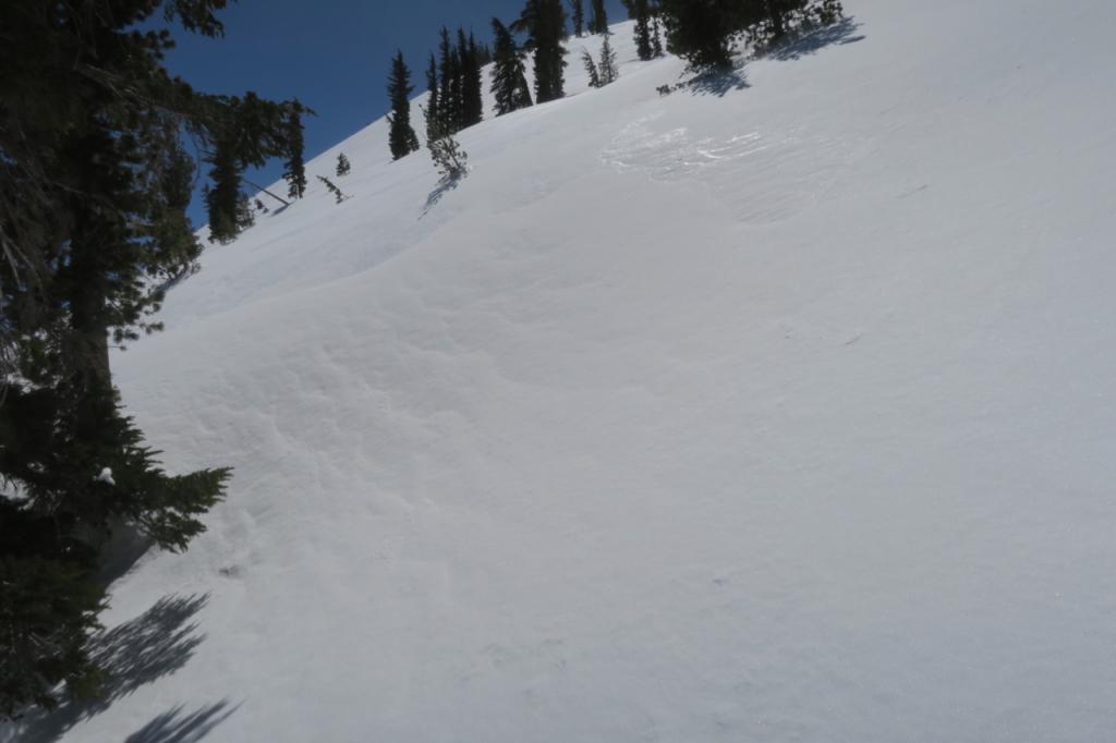 Ridges around 9000 feet were very firm with intense wind.