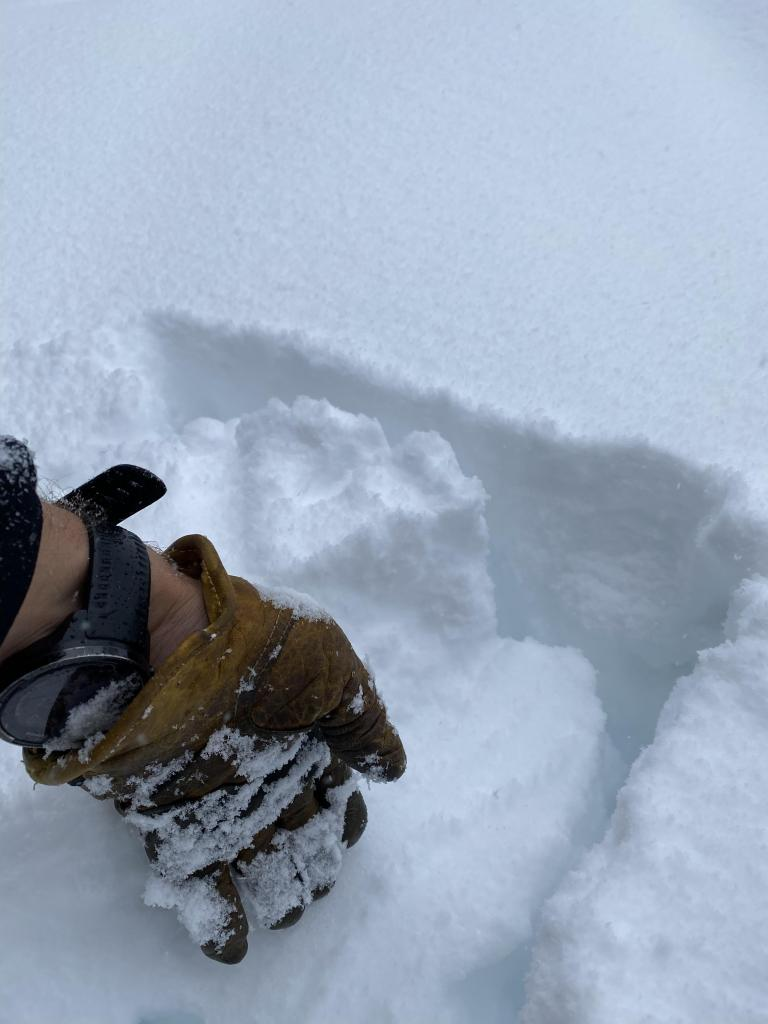 "Top of hand <a href=""/avalanche-terms/snowpit"" title=""A pit dug vertically into the snowpack where snow layering is observed and stability tests may be performed. Also called a snow profile."" class=""lexicon-term"">pit</a> with 6"" on new snow on crust"