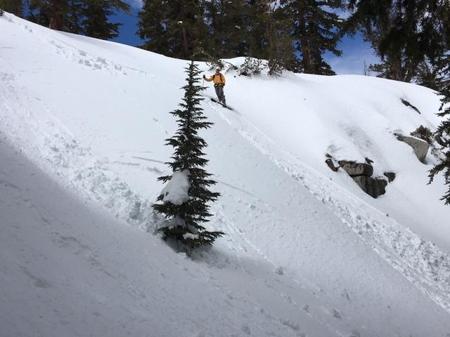 """Small loose wet <a href=""""/avalanche-terms/avalanche"""" title=""""A mass of snow sliding, tumbling, or flowing down an inclined surface."""" class=""""lexicon-term"""">avalanches</a> on north <a href=""""/avalanche-terms/aspect"""" title=""""The compass direction a slope faces (i.e. North, South, East, or West.)"""" class=""""lexicon-term"""">aspects</a> below 8600&#039;."""