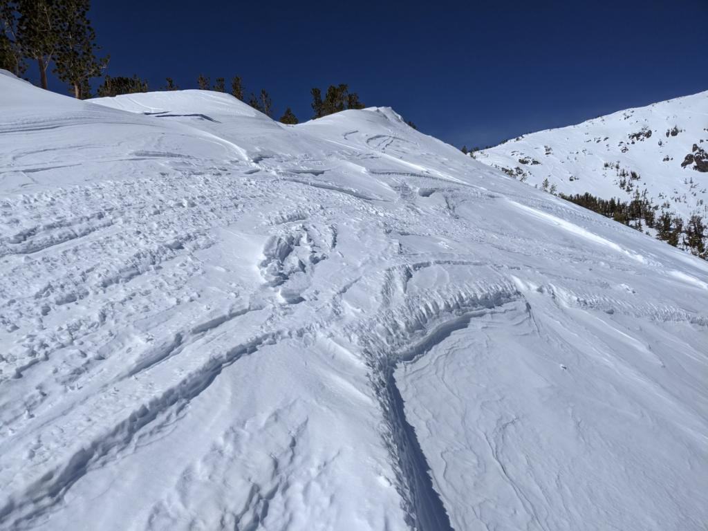 Recent NE winds have scoured most exposed terrain near and above treeline.