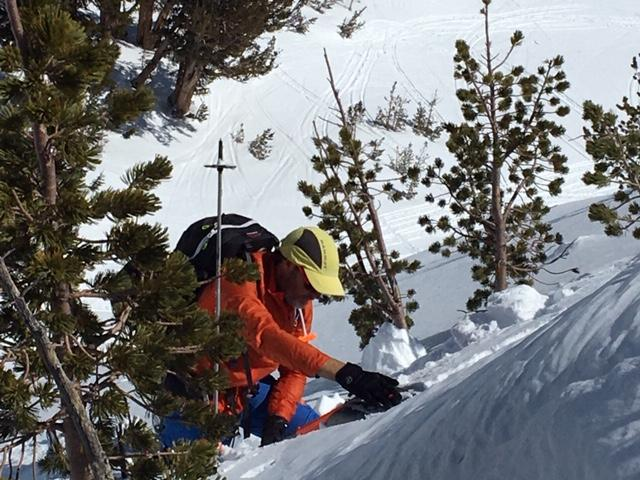 """ECTX on <a href=""""/avalanche-terms/persistent-weak-layer"""" title=""""Weak layers that continue to produce avalanches for several days or weeks after a storm."""" class=""""lexicon-term"""">persistent weak layer</a> at site of skier <a href=""""/avalanche-terms/trigger"""" title=""""A disturbance that initiates fracture within the weak layer causing an avalanche. In 90 percent of avalanche accidents, the victim or someone in the victims party triggers the avalanche."""" class=""""lexicon-term"""">triggered</a> <a href=""""/avalanche-terms/avalanche"""" title=""""A mass of snow sliding, tumbling, or flowing down an inclined surface."""" class=""""lexicon-term"""">avalanche</a> on April 8."""