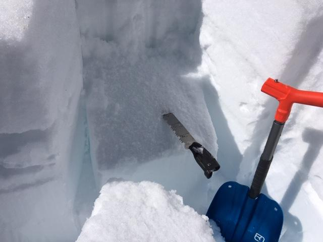 """Strong and thick mf crust on the surface with some wet snow below on top of the buried <a href=""""/avalanche-terms/surface-hoar"""" title=""""Featherly crystals that form on the snow surface during clear and calm conditions - essentially frozen dew. Forms a persistent weak layer once buried."""" class=""""lexicon-term"""">surface hoar</a> <a href=""""/avalanche-terms/snow-layer"""" title=""""A snowpack stratum differentiated from others by weather, metamorphism, or other processes."""" class=""""lexicon-term"""">layer</a>."""