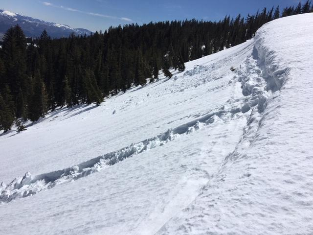 """Previous loose wet roller balls and <a href=""""/avalanche-terms/cornice"""" title=""""A mass of snow deposited by the wind, often overhanging, and usually near a sharp terrain break such as a ridge. Cornices can break off unexpectedly and should be approached with caution."""" class=""""lexicon-term"""">cornice</a> <a href=""""/avalanche-terms/collapse"""" title=""""When the fracture of a lower snow layer causes an upper layer to fall. Also called a whumpf, this is an obvious sign of instability."""" class=""""lexicon-term"""">collapses</a>."""