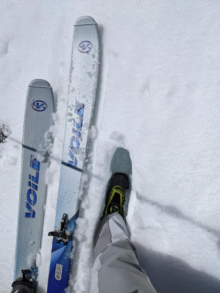 """Wet snow on an E <a href=""""/avalanche-terms/aspect"""" title=""""The compass direction a slope faces (i.e. North, South, East, or West.)"""" class=""""lexicon-term"""">aspect</a> at 9000 ft at 9:30 am. It was still ski supportable but not boot supportable."""