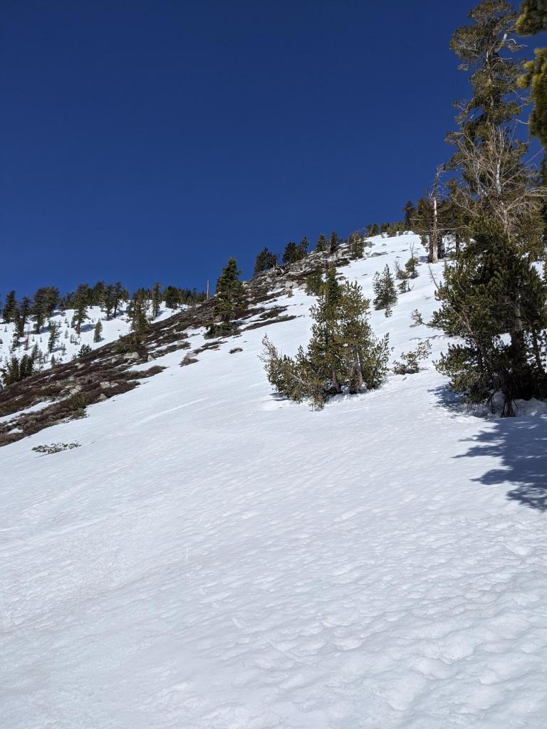 """A mix of wet spring snow and melted out areas on southerly <a href=""""/avalanche-terms/aspect"""" title=""""The compass direction a slope faces (i.e. North, South, East, or West.)"""" class=""""lexicon-term"""">aspects</a> at 8600 ft."""